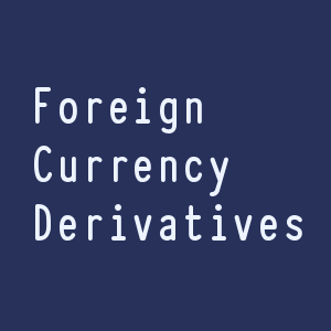 Foreign Currency Derivative