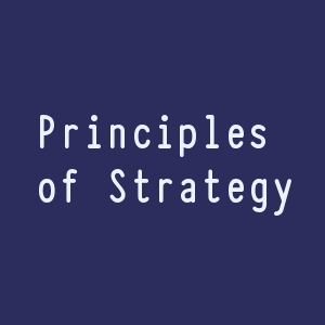 Principles of Strategy